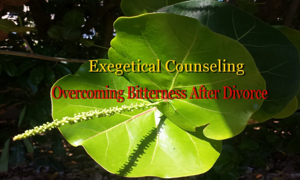 Overcoming Bitterness after Divorce │ Exegetical Counseling │ Psalm 73